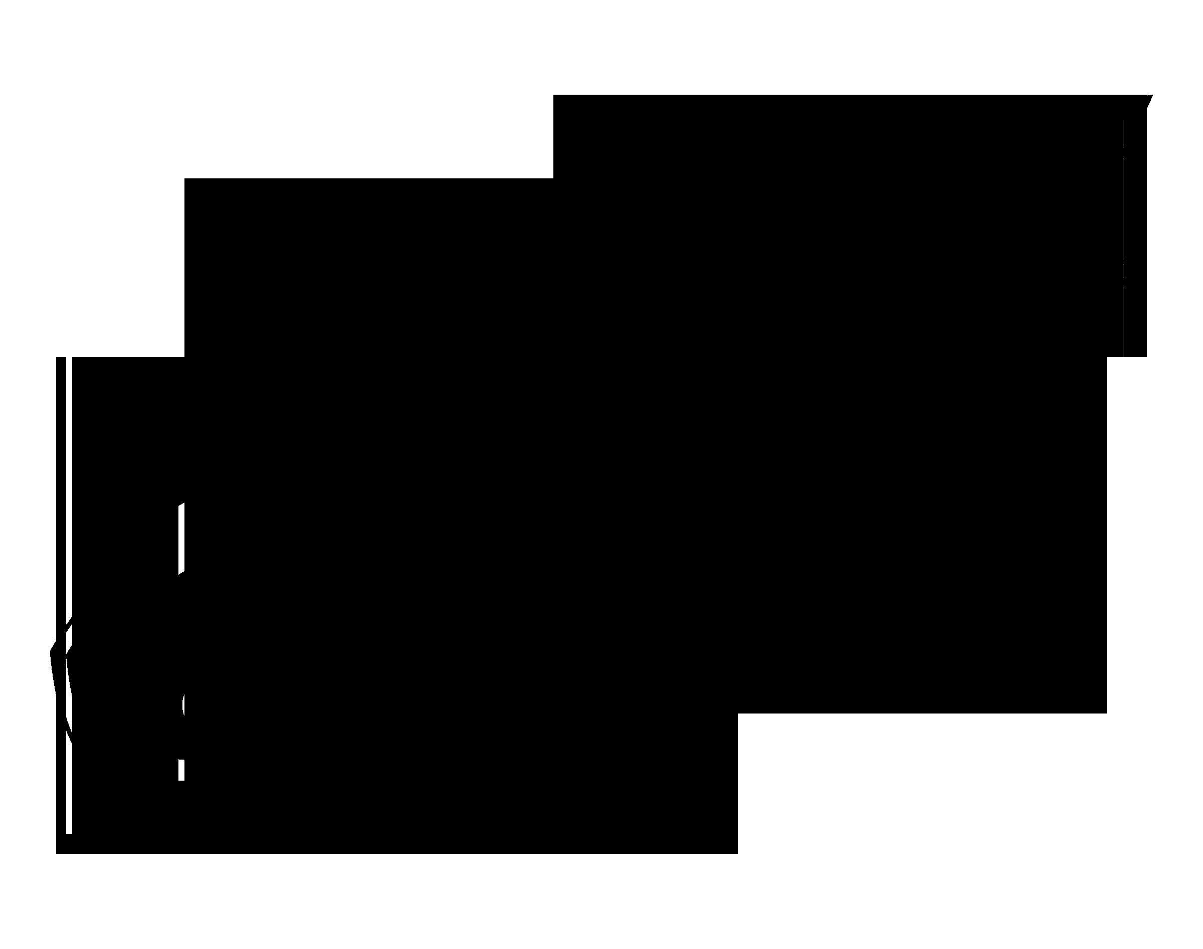 Philadelphia Eagles Logo PNG Transparent