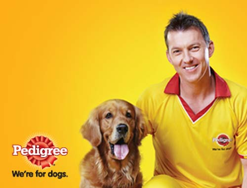 Free Sample Pedigree Dog Food
