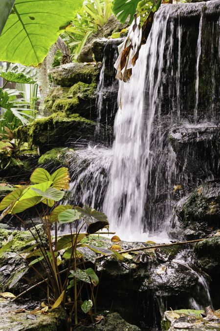 Small waterfall with motion blur in botanical garden