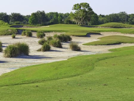 Golf green surrounded by large bunkers on a course in Florida