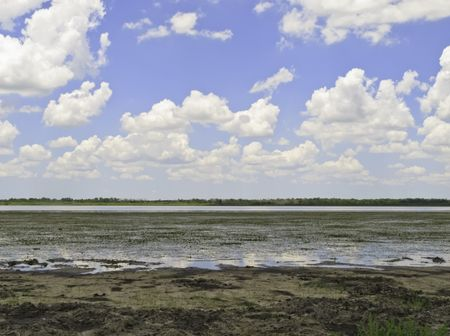 Upper Myakka Lake during a dry spell in May at Myakka River State Park, Florida