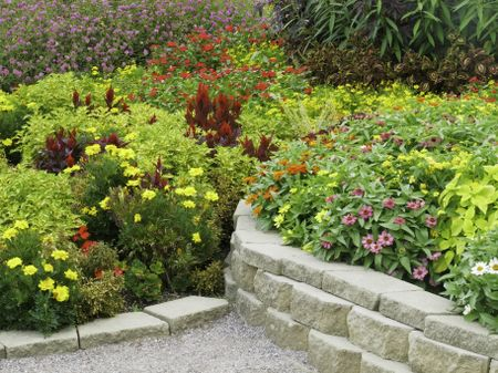 Profusion of flowers in summer garden