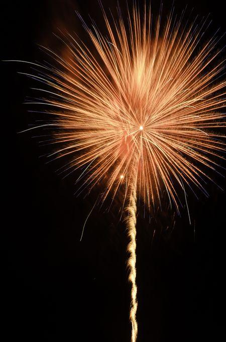 Celebration with reddish orange pyrotechnic flower in the night sky
