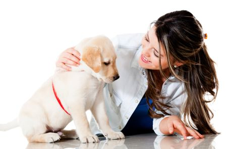 Woman pampering her little dog - isolated over a white background
