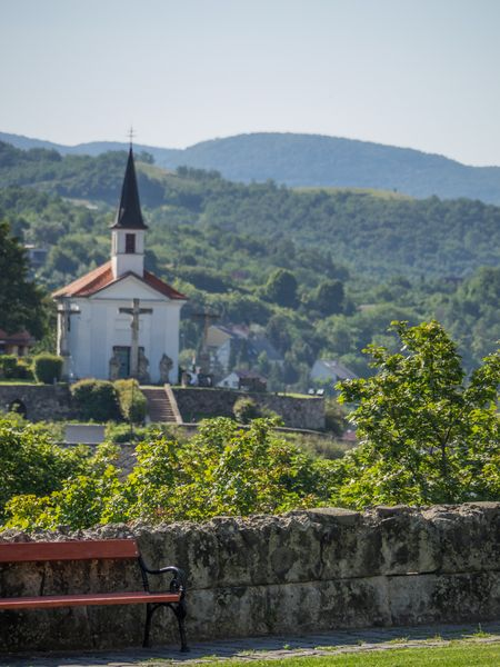Esztergom in hungary and the river danube