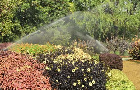 Automated watering of formal garden in the morning, Wheaton, Illinois, in mid September