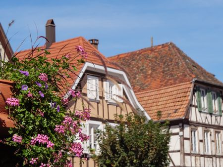 the City of Wissembourg in the French alsace