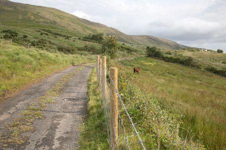 Horse and Footpath at Aasleagh Falls, Killary Fjord; Connemara National Park; Ireland