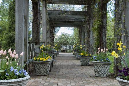 Garden walk with spring flowers beneath pergola on overcast day