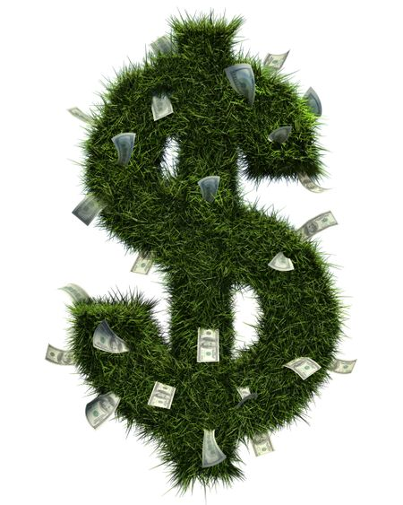 3D grass dollar shape and some bills inside. Isolated over white.