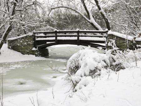 Footbridge over stream in winter woods, northern Illinois