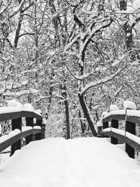 A way to serenity, in black and white: Footbridge covered with snow in winter woods, northern Illinois