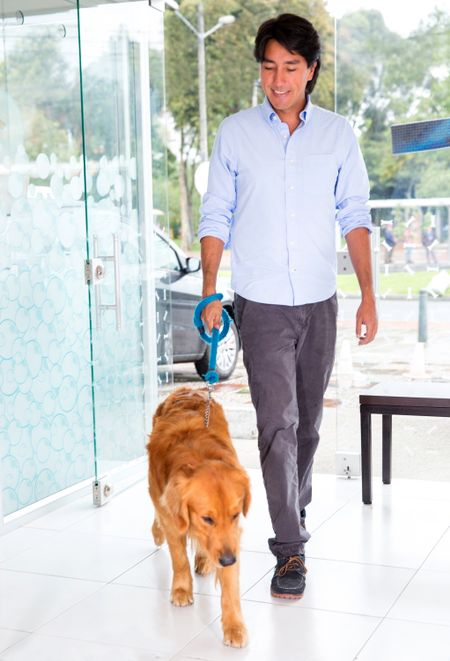 Man taking his cute dog to the vet