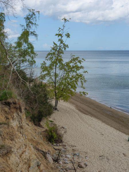 Sopot in poland at the balitc sea