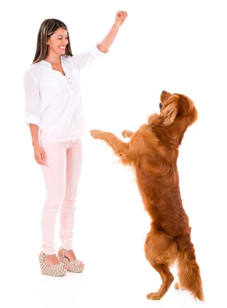 Happy woman playing with a dog - isolated over a white background