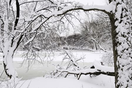 Winter at a glance: River with snow and ice framed by trees in foreground after a blizzard early in March, Oak Brook, Illinois