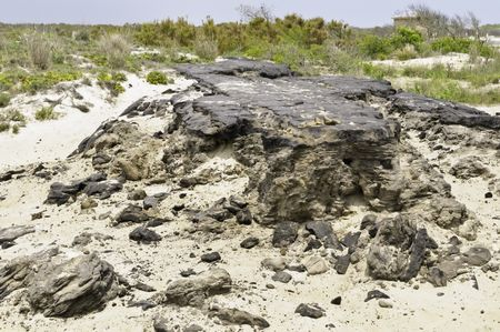 Ruins of Baltimore Boulevard, an island road of asphalt 15 miles long, built for housing development in the 1950s, destroyed by a storm in 1962, Assateague Island National Seashore, Maryland, USA