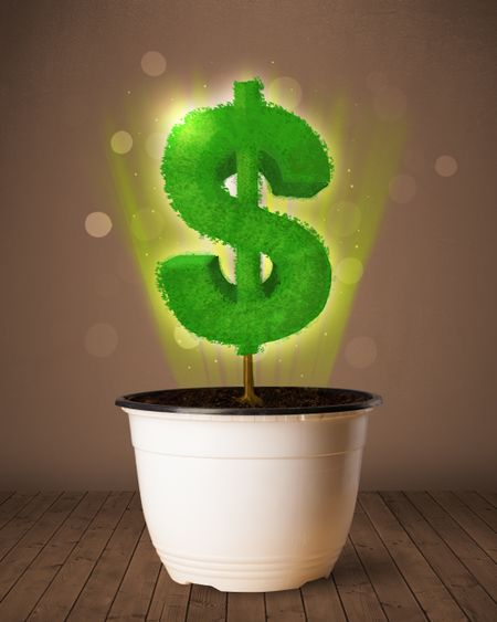 Shining dollar sign tree coming out of flowerpot