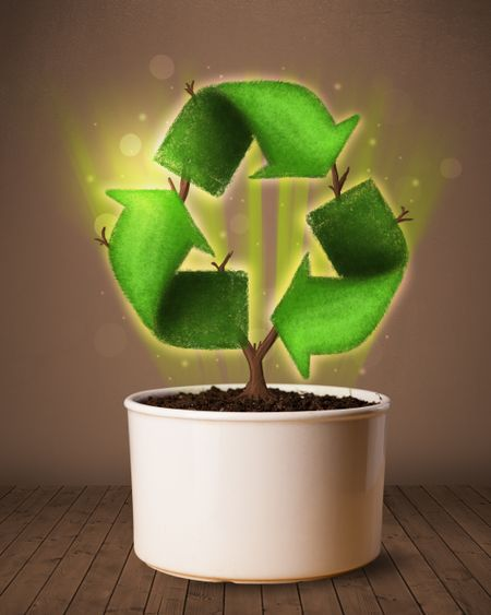 Shining recycle sign growing out of flowerpot concept