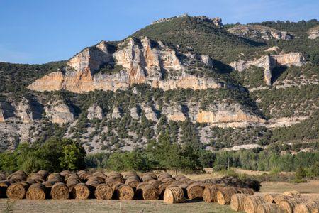 View near Pesquera de Ebro with Barrels of Hay; Burgos; Spain