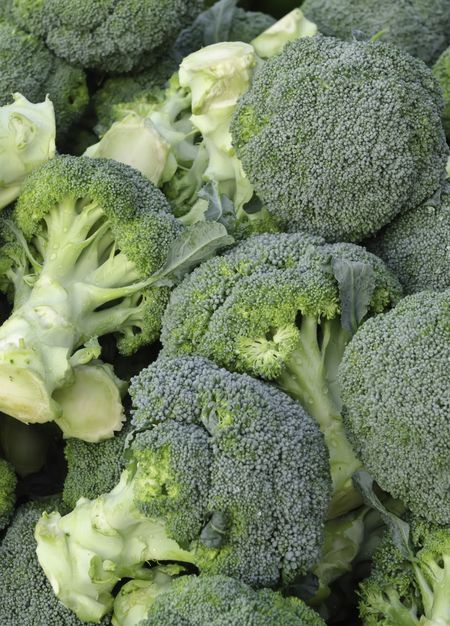 Broccoli (botanical name: Brassica oleracea) at farmer's market