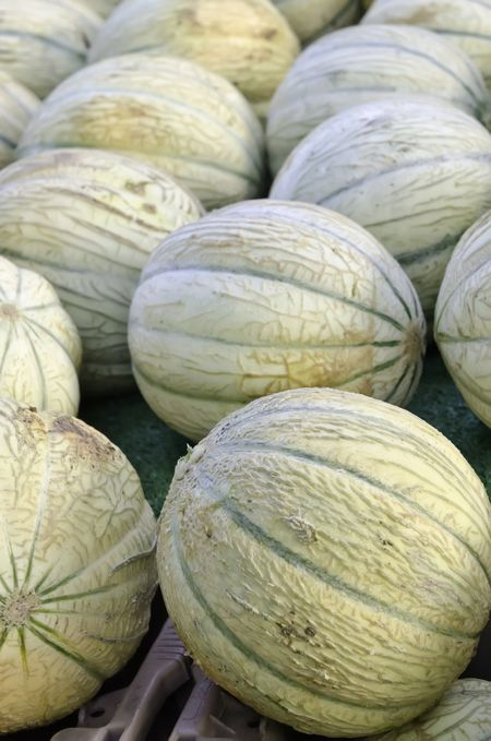 Charentais melons, also known as French cantaloupes, at farmer's market (foreground focus)