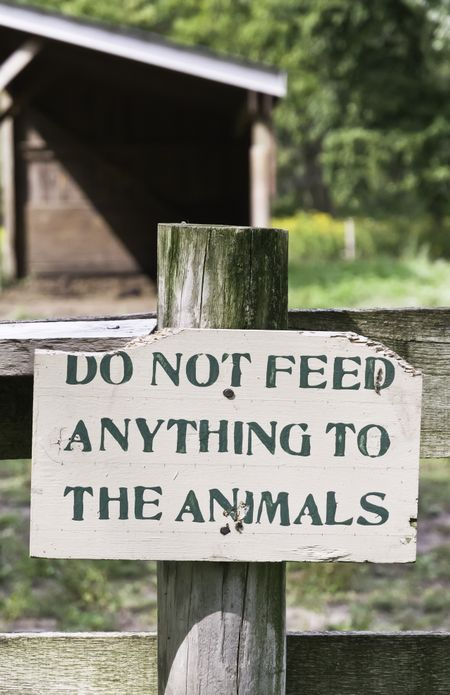 "Sign on public farm in northern Illinois: ""Do not feed anything to the animals"""