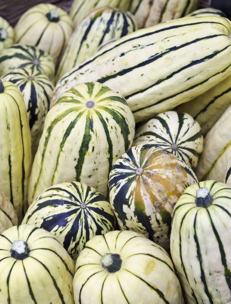 """Delicata squash (binomial name: Cucurbita pepo var. pepo """"Delicata""""), also known as peanut squash and sweet potato squash, at farmer's market in Oregon (shallow depth of field)"""