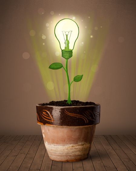 Glowing lightbulb plant coming out of flowerpot