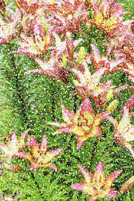 Pointillized summer flower abstract