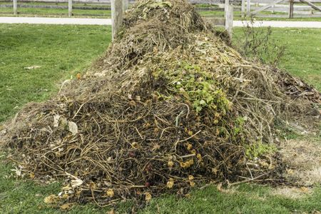 Recycling at a glance: Compost heap, with remains of vegetable and flower garden, beginning to decompose in autumn on a farm in northern Illinois