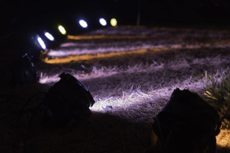 Arrangement of floodlights on lawn for synchronized displays of trees at night (selective focus and shallow depth of field)