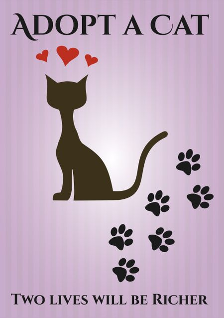 Adopt a cat poster or card with pink background