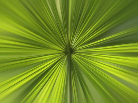 Abstract radial blur of palm leaves for decoration and background with motifs of origin and symmetry in nature