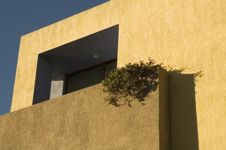 Corner of stucco house, earth tones, with creeper, private porch, after sunrise -- view from street below
