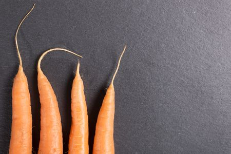 Fresh raw carrots on black slate with complete stems