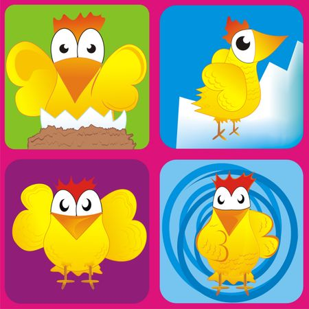 Chicken illustration in squared colourful backgrounds