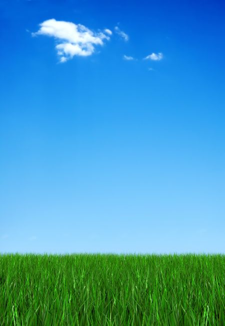 green grass and blue sky illustration