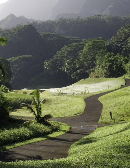 Cart path along fairway with morning dew and cart tracks on tropical golf course