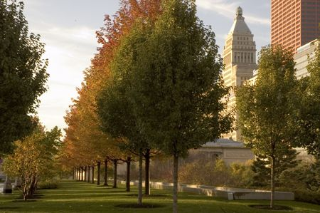 View from Millennium Park in Chicago