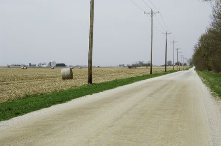 Rural dirt road lined with trees and telephone poles by farm fields on overcast spring day in northern Illinois