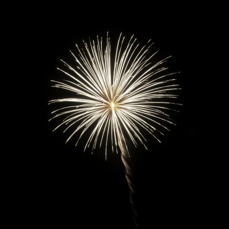 One burst of white fireworks on square background