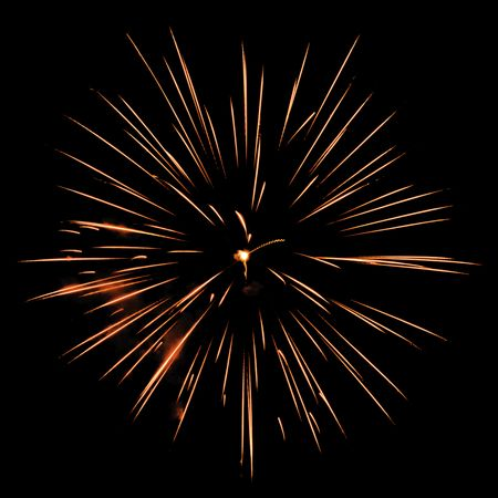 One burst of fireworks on square background of night sky