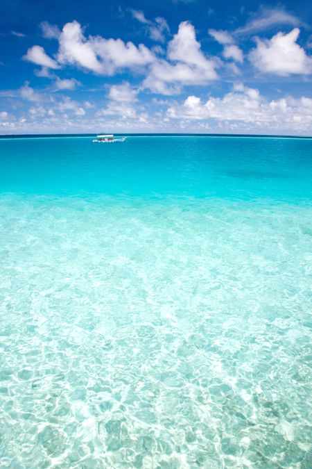 Amazing view of a clear blue ocean