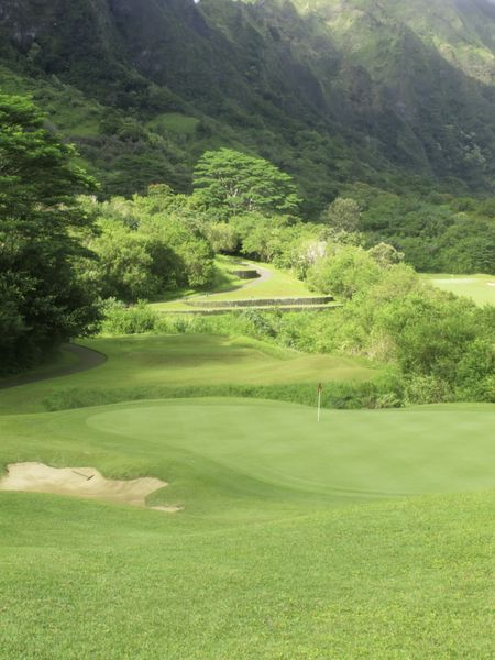Mountainside golf course in Hawaii: fairway approach to putting green with terraced tee box of another hole beyond