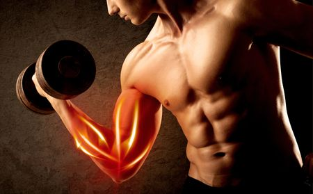 Fit bodybuilder lifting weight with red muscle concept on background