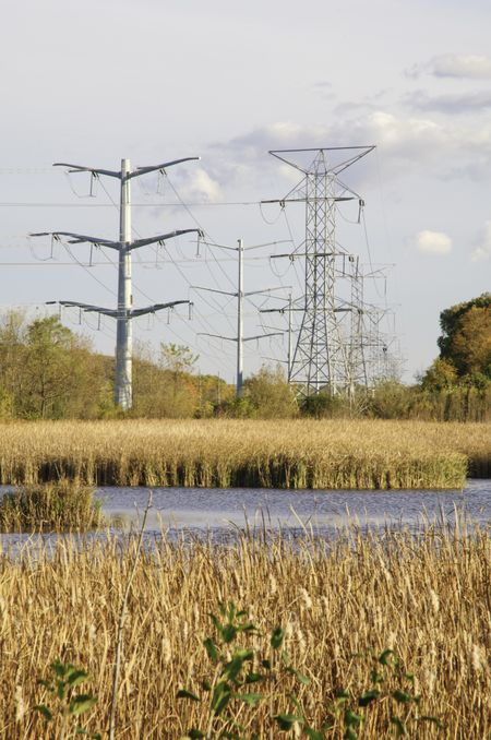 Environmental landscape in mid October, with lake and reeds in foreground and two rows of transmission towers receding across forest preserve in northern Illinois