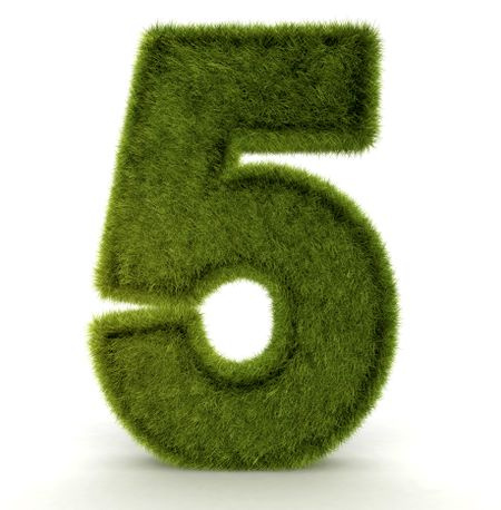 Number five in 3D and grass texture - isolated over white