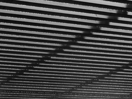Luminous raindrops clinging to lower edges of pergola beams, in black and white