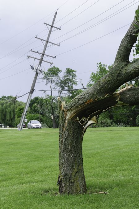 Damage from severe storm: cracked tree and tilted power pole on lawn of public school about 36 hours after a tornado touched down on the first day of summer in Downers Grove, Illinois, 2011